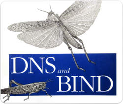Install Bind